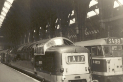 1955 to 1959 British Railways in Black & White.  (60)0060