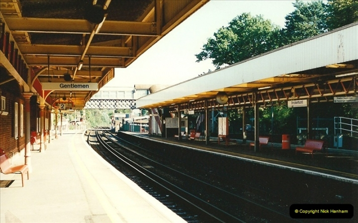 1995-10-10 Brockenhurst, Hampshire.  (3)0285