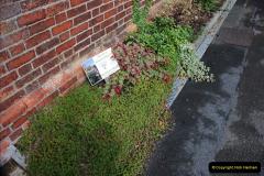 2010-09-16 Sherborne, Dorset.  (31)031
