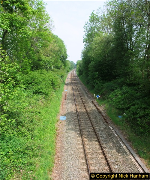 2016-05-27 Near Ford Abbey, Dorset.  (1)0152