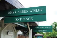 RHS Wisley 25 August 2016