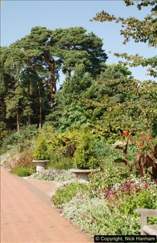 2016-08-24 RHS Wisley Gardens.  (13)013