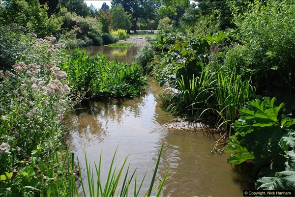 2016-08-24 RHS Wisley Gardens.  (19)019