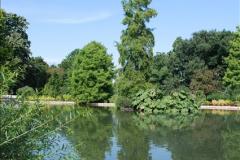2016-08-24 RHS Wisley Gardens.  (21)021