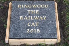2015-11-02 Setting up the memorial to Ringwood on the SR. (6)89