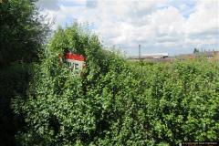 2017-05-19 Shropshire & Hampshire (10)249