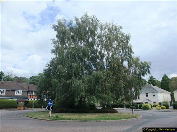2014-08-23 Parkstone, Poole, Dorset.  (5)57