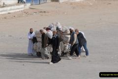 2011-11-13 Safaga, Egypt.  (39)