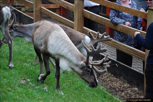 2017-08-24 Cairngorms National Park.  (36)036