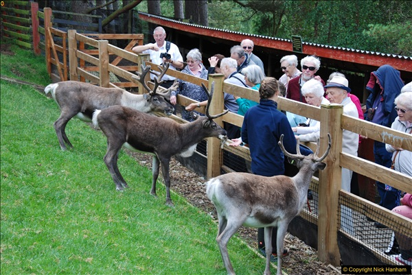 2017-08-24 Cairngorms National Park.  (40)040