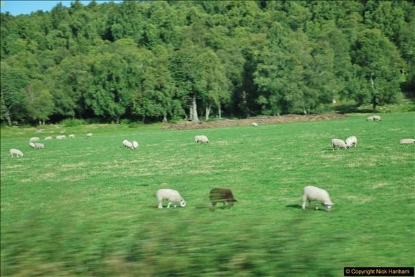 2017-08-24 Cairngorms National Park.  (5)005