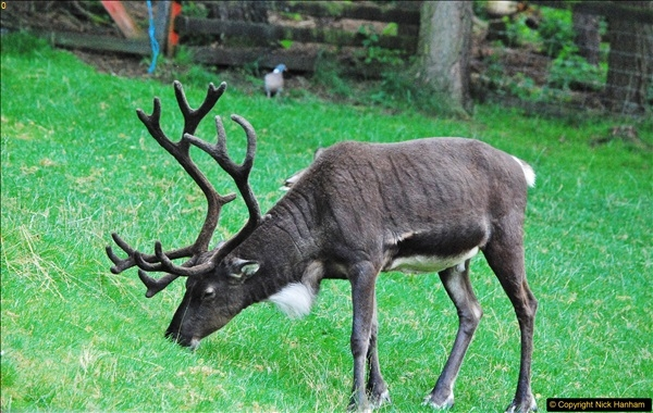 2017-08-24 Cairngorms National Park.  (48)048