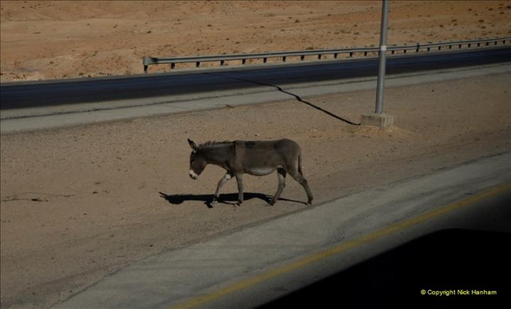 2011-11-12 Aqaba & Petra, Jordan.  (86)