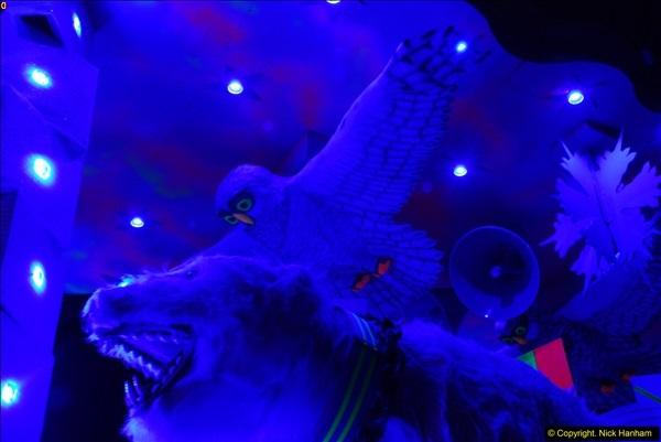 2015-11-18 The Somerset Carnivals 2015 - Shepton Mallet.  (303)303