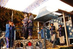2014-11-12 The Somerset Carnavals - Shepton Mallet (6)006