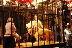 2014-11-12 The Somerset Carnavals - Shepton Mallet (75)075
