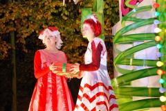 2014-11-12 The Somerset Carnavals - Shepton Mallet (92)092