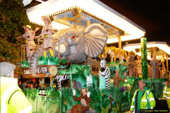 2014-11-12 The Somerset Carnavals - Shepton Mallet (97)097