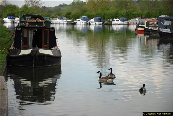 2014-04-11 The Lee Navigation, St. Margarets, Hertfordshire.  (10)