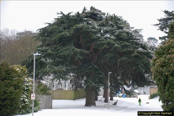 2018-03-02 Snow in Parkstone, Poole, Dorset.  (33)044