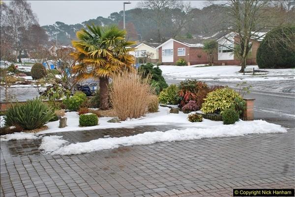 2018-03-03 Snow going (4)078