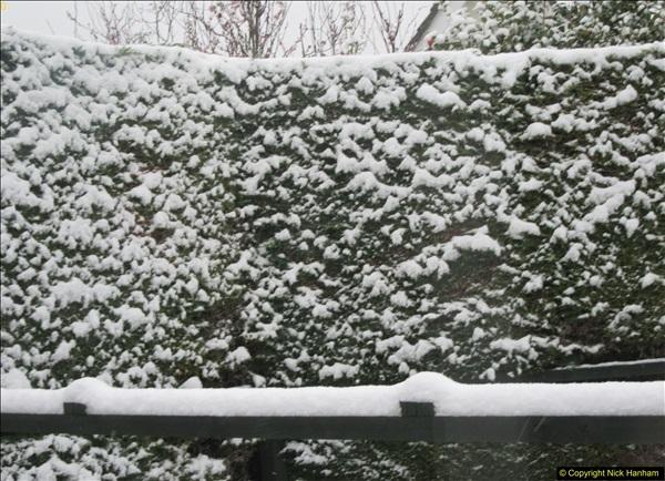 2018-03-17 & 18 More snow.  (20)105