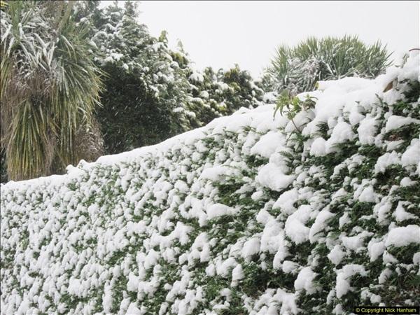 2018-03-17 & 18 More snow.  (30)115