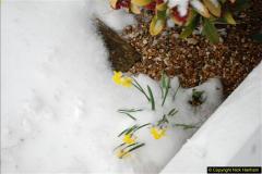 2018-03-02 Snow in Parkstone, Poole, Dorset.  (12)023