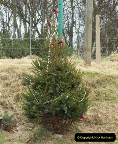 2012-12-12 Santa Specials & DMU 2.  (47)177