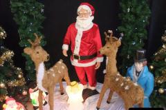2012-12-02 Santa Specials and DMU 1.  (16)016