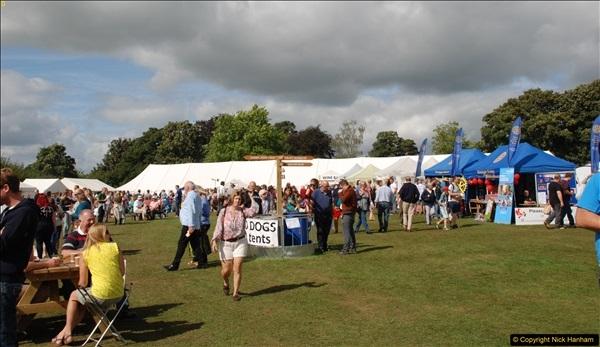 2016-09-11 Sturminster Newton Cheese Festival 2016, Sturminster Newton, Dorset.  (172)172