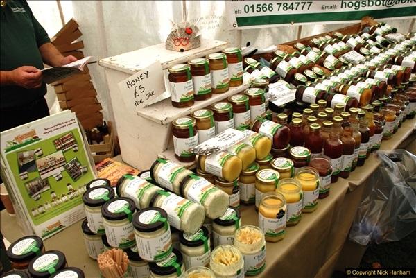 2016-09-11 Sturminster Newton Cheese Festival 2016, Sturminster Newton, Dorset.  (24)024