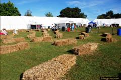 2016-09-11 Sturminster Newton Cheese Festival 2016, Sturminster Newton, Dorset.  (6)006