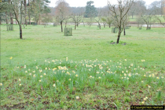 2018-03-30 The Vyne, Basingstoke, Hampshire.  (22)118