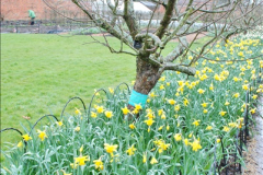 2018-03-30 The Vyne, Basingstoke, Hampshire.  (25)121