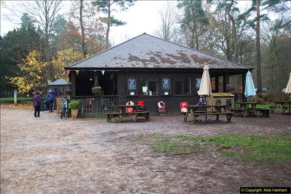 2014-11-21 The Woodland in Winter. Wendover Woods, Buckinhhamshire.  (180)180