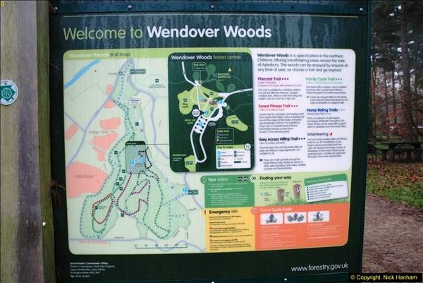 2014-11-21 The Woodland in Winter. Wendover Woods, Buckinhhamshire.  (183)183