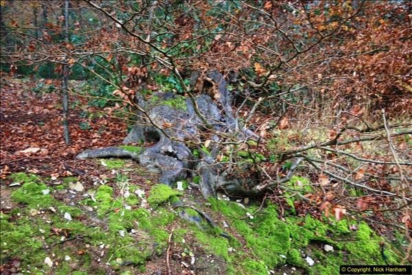 2014-11-21 The Woodland in Winter. Wendover Woods, Buckinhhamshire.  (95)095