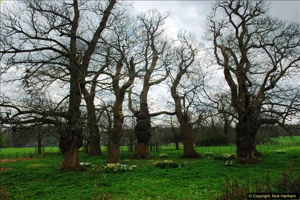 2016-04-14 National Trust property Barrington Court, Berkshire.  (62)062