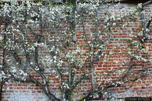 2016-04-14 National Trust property Greys Court, Oxfordshire.  (49)118