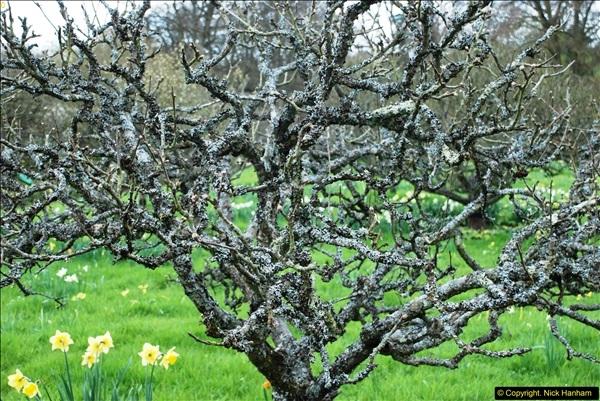 2016-04-14 National Trust property Greys Court, Oxfordshire.  (67)136