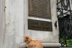 2013-10-17 to 18 London to Istanbul, Turkey.  (218)218
