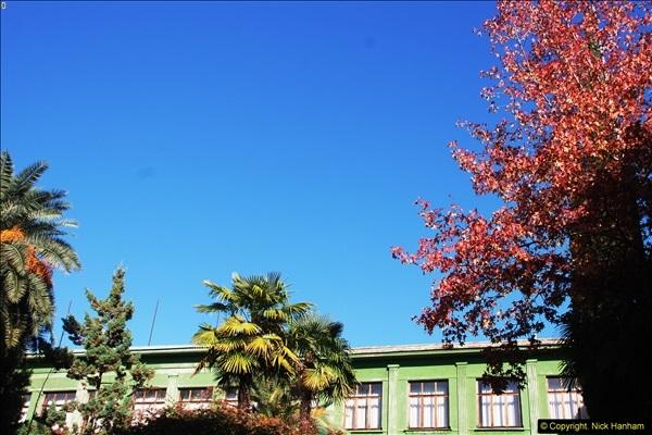 2013-10-20 Trabzon, Turkey.  (320)320