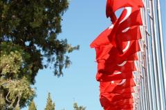 2013-10-27 Canakkale, Turkey.  (115)199
