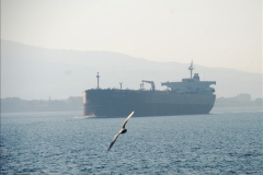2013-10-27 Canakkale, Turkey.  (48)132