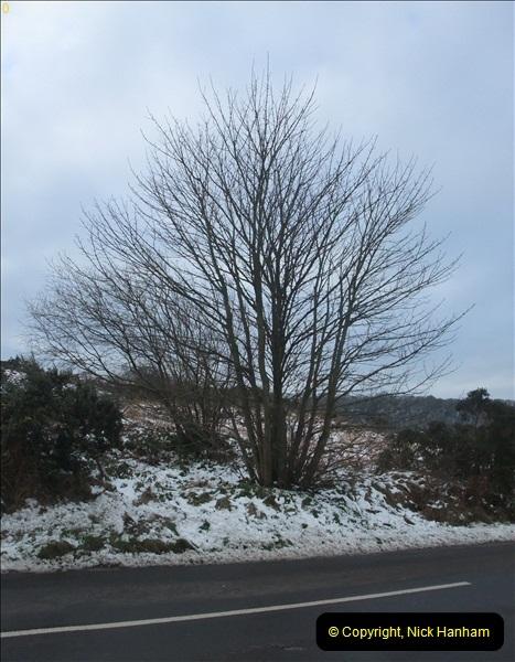 2013-01-21 Corfe Castle, Dorset.  (3)003