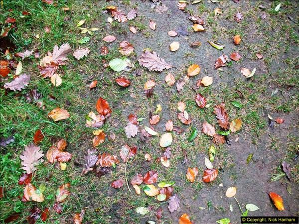 2013-10-03 Kingston Lacy House, Wimborne, Dorset.  (46)135