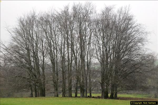 2014-01-30 Montacute House, Montacute, Somerset.  (1)201