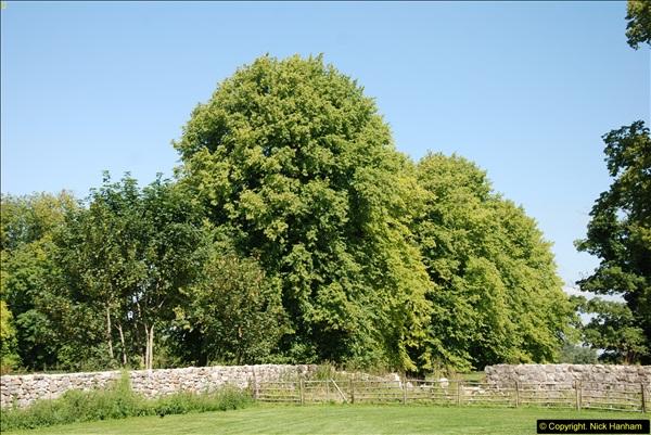 2014-07-22 Avebury, Wiltshire.  (3)236