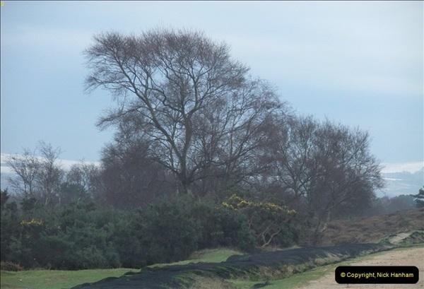 2013-01-21 Corfe Castle, Dorset.  (1)001